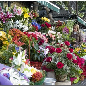 The Art Of Delivering Flowers