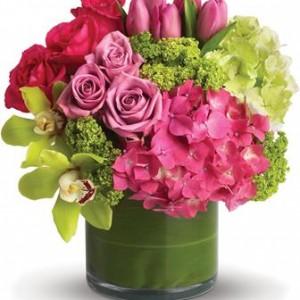 Featured Client: Dural Flower Farm Florist, Dural NSW